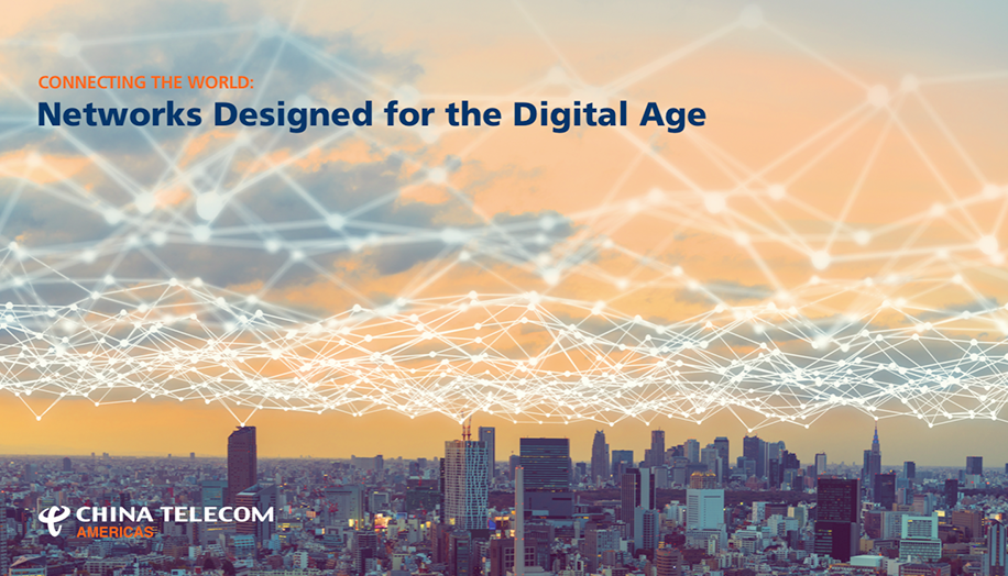 Networks Designed for the Digital Age - Global Case Study