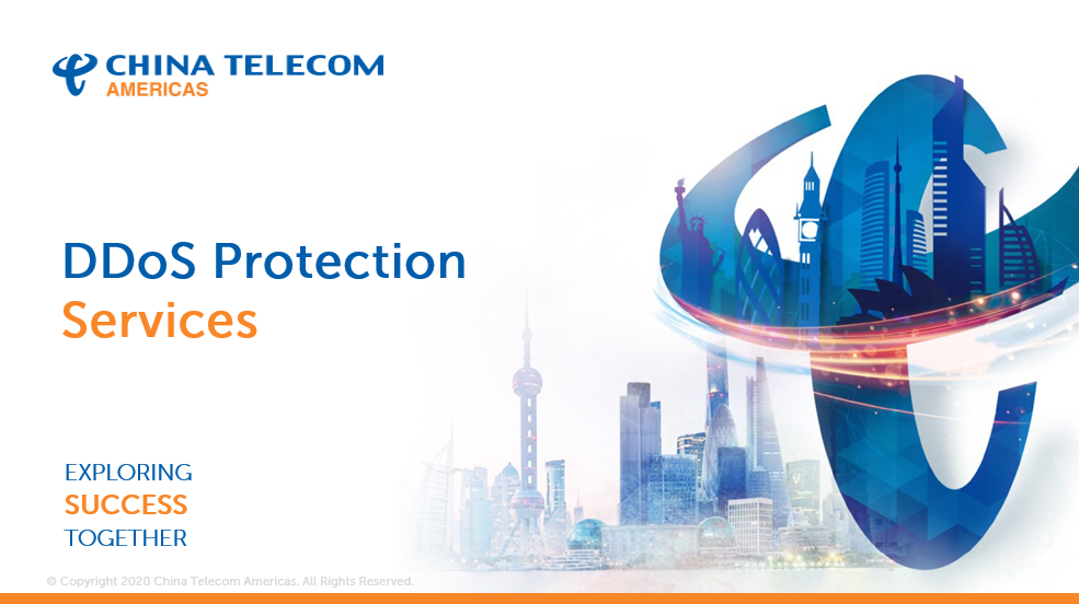 DDoS Protection Services Preview Image